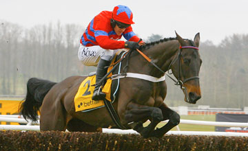 Sprinter Sacre - Newbury 17/02/2012