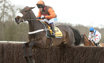 Long Run - Newbury 17/02/2012