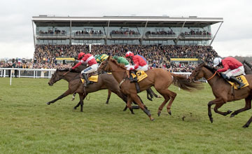 Zarkandar - Newbury 17/02/2012