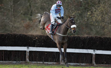Rubi Light - Gowran Park - 18/02/2012