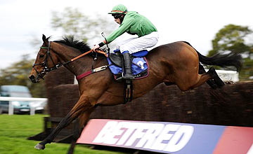Havingotascoobydo - Wetherby 2011