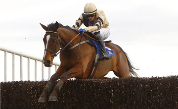 Prince De Beauchene - Fairyhouse 25/02/2012