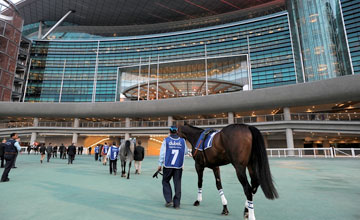 Meydan Racecourse