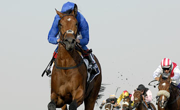 Gamilati wins the UAE 1000 Guineas Trial - 06.01.2012
