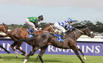 South Africa Gimmethegreenlight Lands Queen S Plate