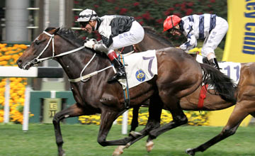 Pure Champion (Gerald Mosse) wins the HKGr.3 January Cup at Happy Valley on Wednesday evening