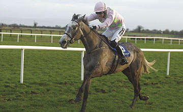 Champagne Fever - Fairyhouse - 2012