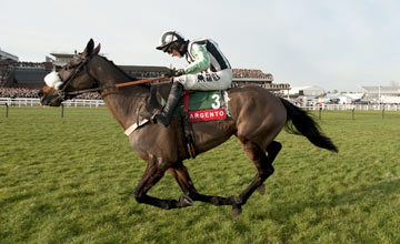 Midnight Chase - Cheltenham - 28/01/2012