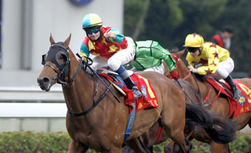 Ambitious Dragon - Sha Tin - 28/01/2012