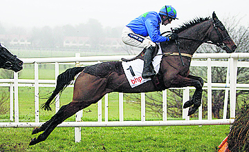 Hurricane Fly - Leopardstown - 29/01/2012