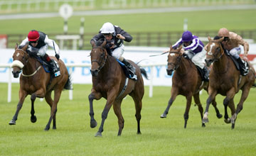 Izzi Top - pretty Polly Stakes at Curragh racecourse