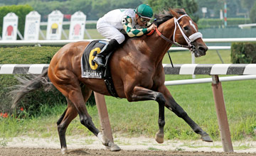 MUCHO MACHO MAN wins Suburban Handicap at Belmont Park