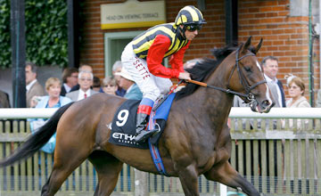 Elusive Kate - Newmarket 13/07/2012