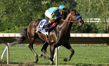 Paynter (Awesome Again) and jockey Raphael Bejarano win the Haskell Invitational (Gr I) at Saratoga Racecourse 7/29/12. Trainer: Bob Baffert. Owner: Zayat Stables LLC