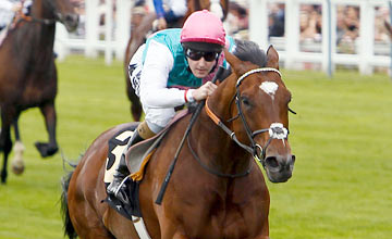 Frankel: Breeders' Cup bid would cap a sensational season but looks unlikely