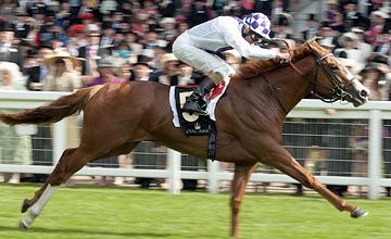 Dawn Approach - Royal Ascot Day 1 19.06.2012