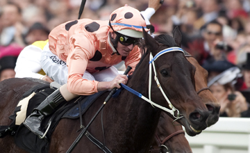 Black Caviar - Ascot 23/06/2012