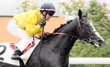 Meandre - GRAND PRIX DE SAINT-CLOUD (Groupe I)