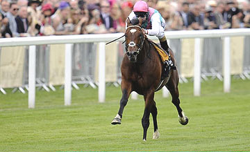 Frankel - Queen Anne Stakes - Royal Ascot 2012