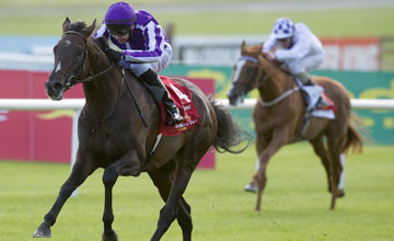 Camelot lands Aidan O'Brien his tenth win in the Irish Derby