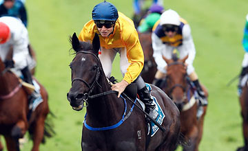 Silent Achiever at Ellerslie Racecourse on March 3, 2012