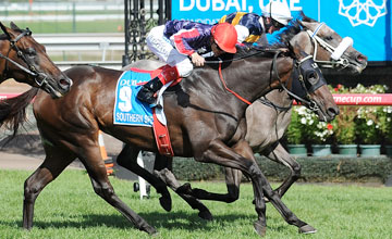 Luke Nolen rides Manighar to win race 7 Dubai Australian Cup during Super Saturday at Flemington Racecourse on March 10, 2012