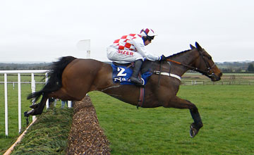 Flemenstar - Naas Directors Plate Novice Chase Naas