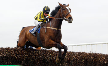 Paddy Pub - National Handicap Chase Naas