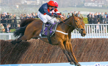 Bobs Worth - Cheltenham 14/03/2012