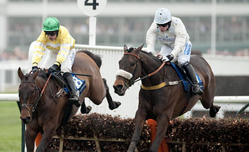 Cape Tribulation (right) - Cheltenham 15.03.2012
