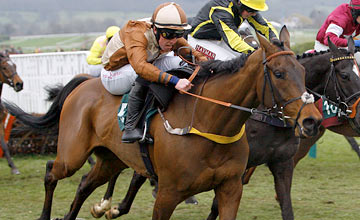 Attaglance - Cheltenham 16.03.2012