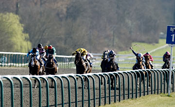 Gusto - lingfield 24.03.2012