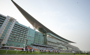 Dubai Gold Cup - race voided