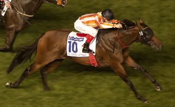 Ortensia, winner of a Group 1 in Dubai, can land the King's Stand