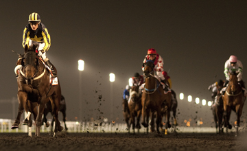 Krypton Factor - Meydan- 31.03.2012