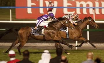 Cirrus Des Aigles - Meydan - 31.02.2012