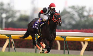 Curren Black Hill - NHK Mile Cup (G1) - 05.05.2012
