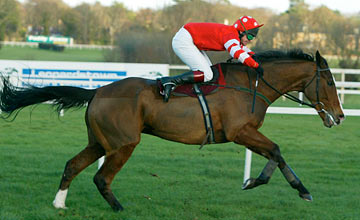 Florida Pearl - The Hennessy Gold Cup 08.02.2004