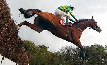 Like Your Style - Punchestown 08.05.2012