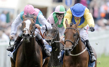 Mickdaam - Tony Hamilton riding Mickdaam (R) winThe MBNA Chester Vase from Model Pupil (L) at Chester racecourse on May 10, 2012 in Chester, England