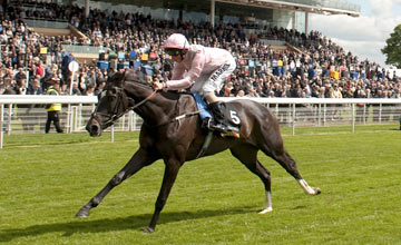 The Fugue - York 16.05.2012