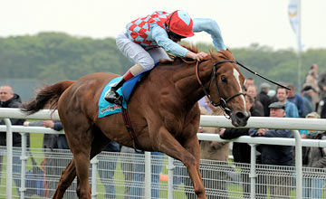 Red Cadeaux - York 18.05.2012