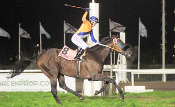 AL QASR SCORES &ldquo;WIN AND YOU&rsquo;RE IN&rdquo; BERTH INTO BREEDERS&rsquo; CUP TURF FOLLOWING VICTORY FRIDAY IN GRAN PREMIO 25 DE MAYO IN ARGENTINA