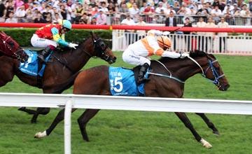 Liberator (Weichong Marwing) staves off Ambitious Dragon (Umberto Rispoli) at Sha Tin 27/05/2012
