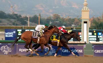 Fort Larned hangs on to beat Much Macho Man in a thrilling Classic