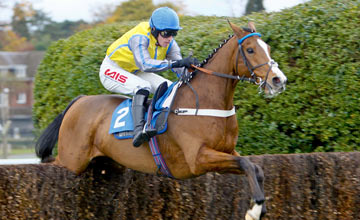 Overturn - Jason Maguire, Sandown 10.11.2012