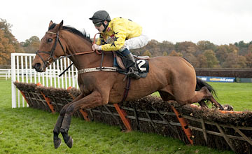 Miss Exhibitionist, Lingfield 13.11.2012