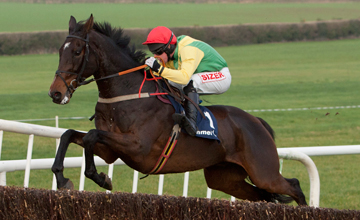 Sizing Europe (Andrew Lynch) winning the Clonmel Oil Chase 15.11.2013
