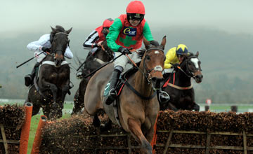 DODGING BULLETS with R Walsh Cheltenham 16-11-12.