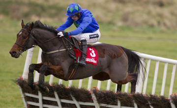 Hurricane Fly - Punchestown - 18/11/2012